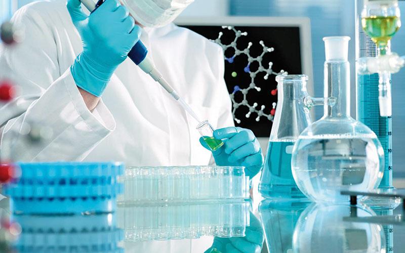 Education, formation et recherche scientifique : Un nouvel organe est né