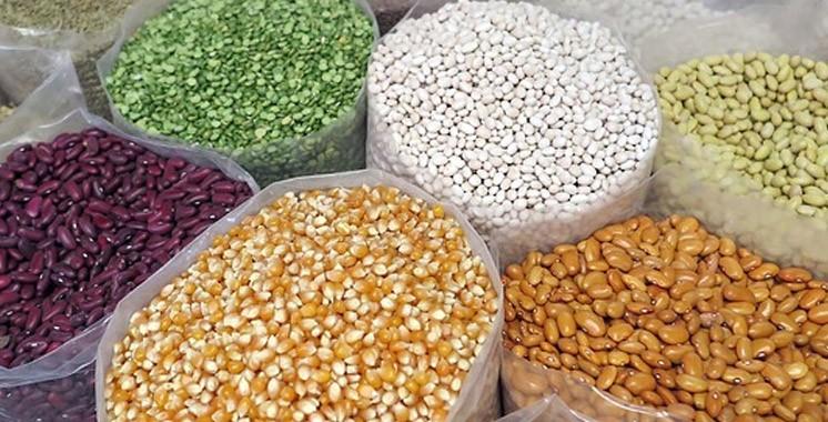 Les légumineuses alimentaires en débat à Marrakech