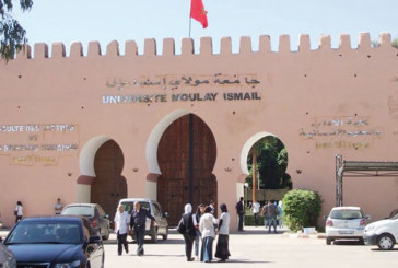L'Université Moulay Ismaïl lance la pré-inscription en ligne