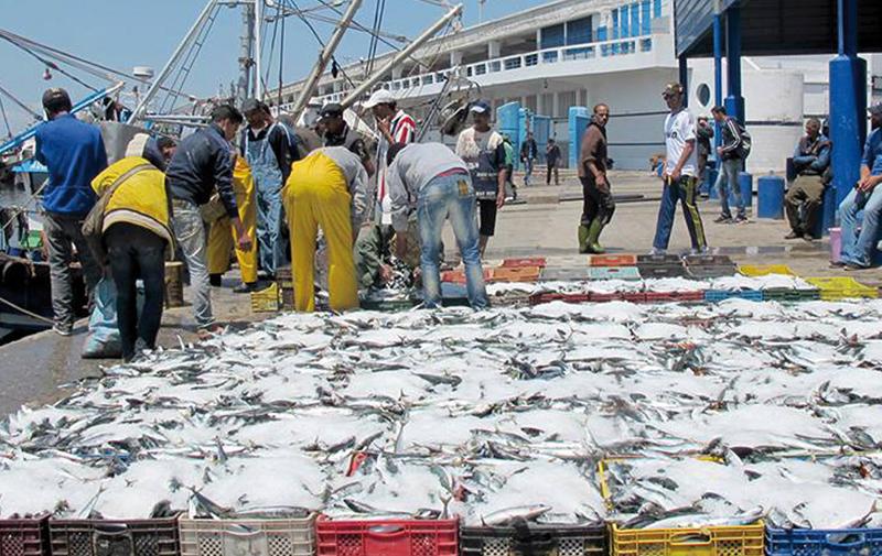 L'ONP recourt  à la justice pour récupérer les caisses en plastique