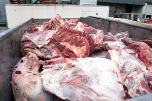 Abattoirs : L'Onssa fixe les conditions sanitaires