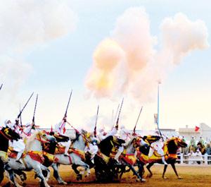 El Jadida glorifie le patrimoine équestre