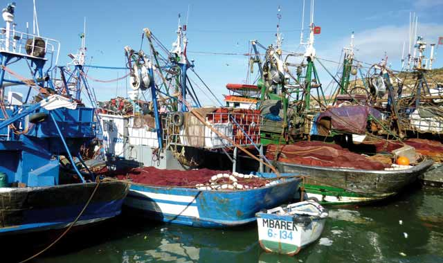 Accord de pêche : Le oui  du groupe socialiste  au parlement européen