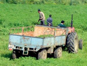 Les terrains de l'agropole d'Agadir enfin identifiés