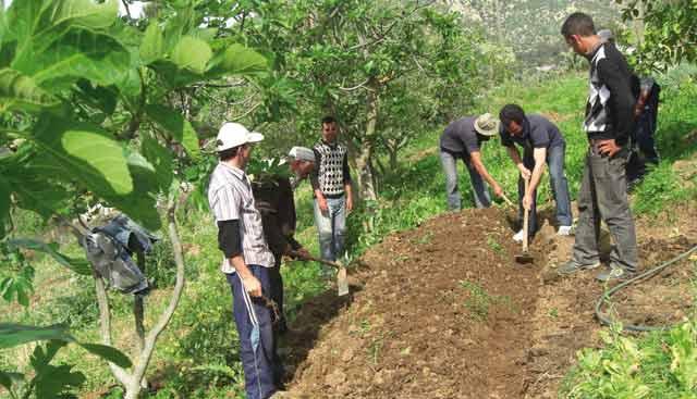 Lancement du Centre d information  du ministère de l agriculture