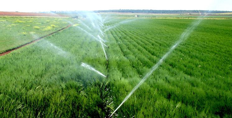 Plan régional de lutte contre les effets du déficit pluviométrique: Casa-Settat dévoile sa feuille de route