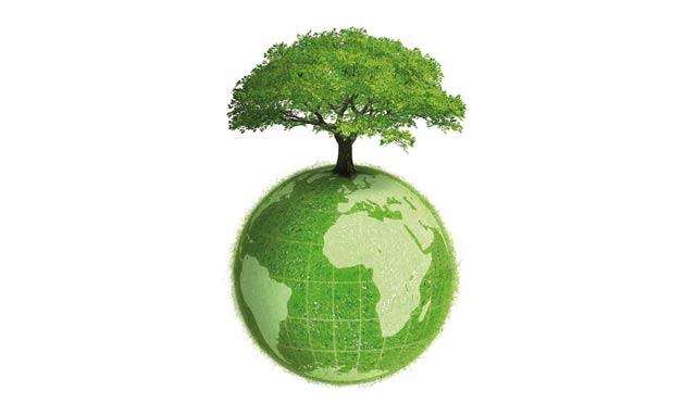 Charte de l environnement et du développement durable