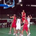 Les basketteurs  chez les Pharaons