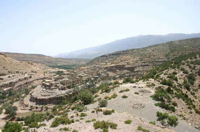 Archéologie : Des ossements de Proboscidiens découverts dans la province de Boulmane