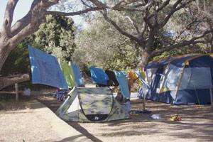 L'été arrive, honneur au camping