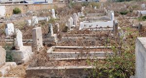 Cimetière Chalh Sid Al Khadir : Aucun respect pour les morts
