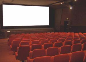 Les salles de cinéma se réduisent en peau de chagrin