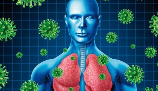 Coronavirus : L OMS préoccupée face au potentiel de transmission