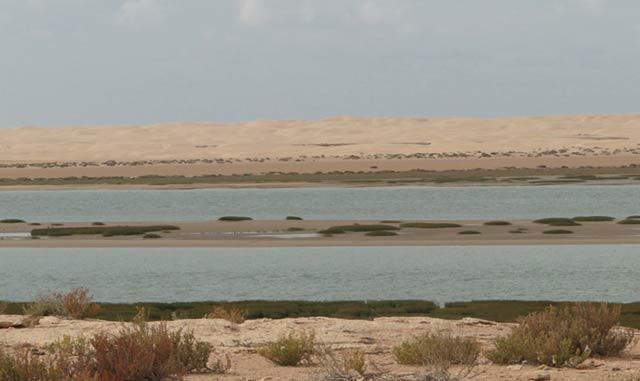 Dakhla : L Agence du bassin hydraulique décline sa stratégie de l eau 2013-2016