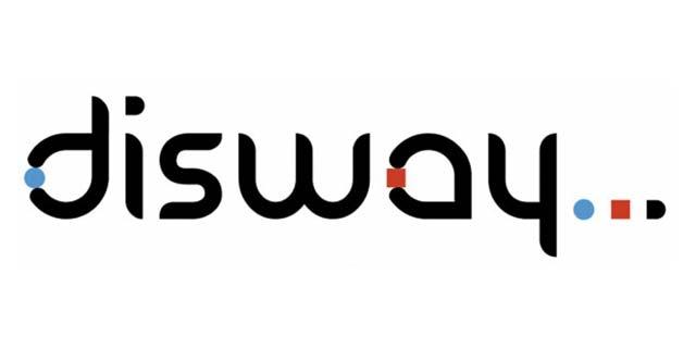 Disway réalise un résultat  net en baisse de 3,2% au  1er semestre 2012