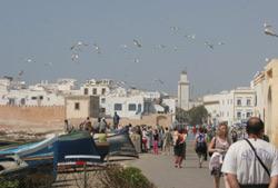 Essaouira : vers un habitat sain et propre