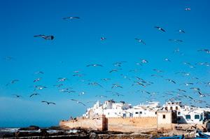 Mogador, une ville dans le vent