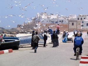 Las Palmas et Essaouira renforcent leur coopération