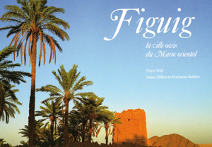 Parution d'un livre sur Figuig, la ville oasis de l'Oriental