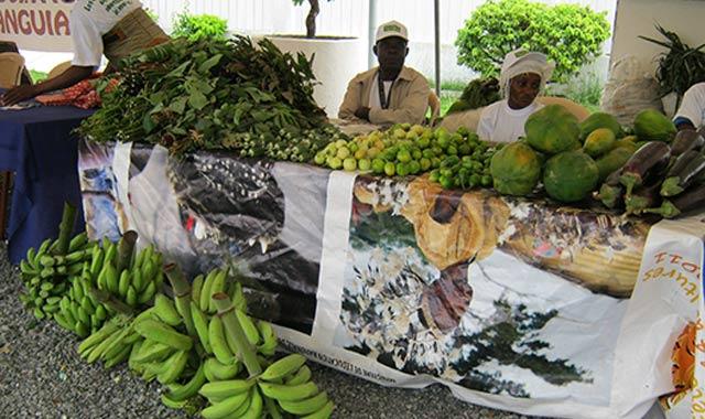 Le Maroc invité d honneur de la Foire agricole du Gabon