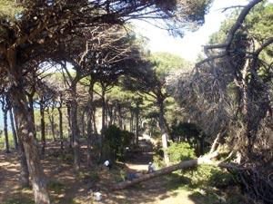 Perdicaris, un site naturel et historique très fréquenté