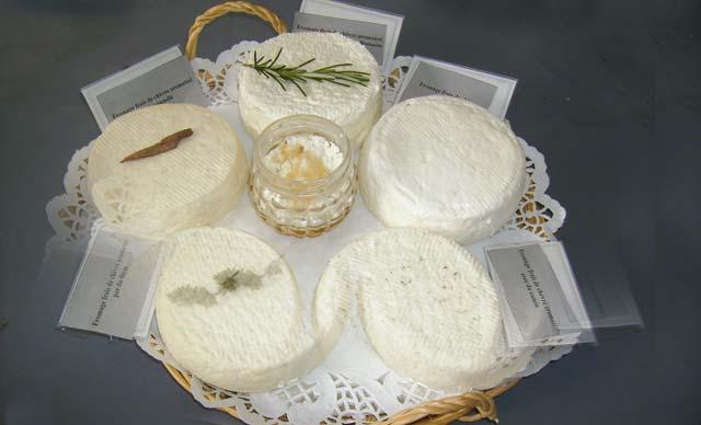 Bientôt 14 fromageries  semi-industrielles et fermières  pour la région Tanger-Tétouan