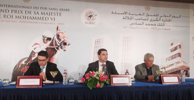 Le pur-sang arabe, star de l hippodrome de Casablanca