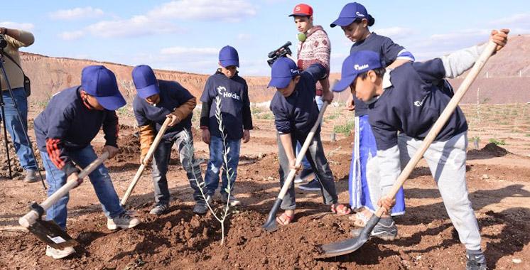 Holcim Maroc: Une carrière de schistes réhabilitée en une oliveraie