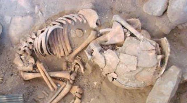 Découverte au sud-ouest d'Aïn Taoujdate de deux squelettes humains qui daterait de 6.000 à 14.000 ans