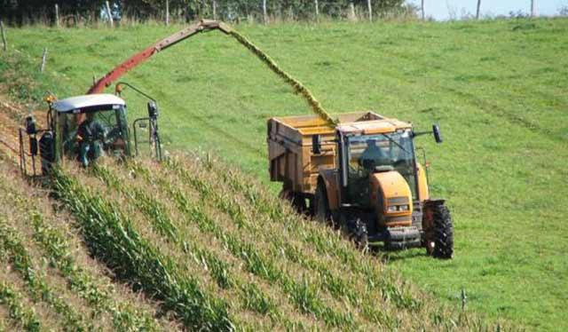 Clôture du projet de  modernisation des exploitations agricoles au Haouz