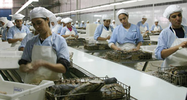 Laâyoune : 22 dossiers ont généré 464 millions de dirhams d investissement