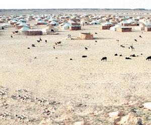 Nouvelle provocation du Polisario