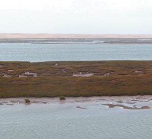 Tarfaya : Pour la sauvegarde de la lagune de Naila