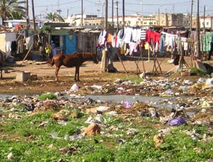 Marrakech : Conférence sur l'environnement