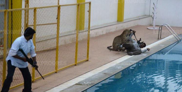 Inde : un léopard blesse cinq personnes dans une école