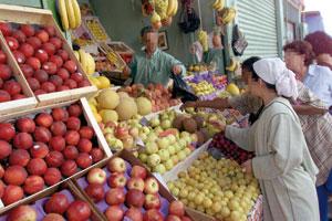 Agadir : Troisième édition des trophées de la filière des fruits et légumes