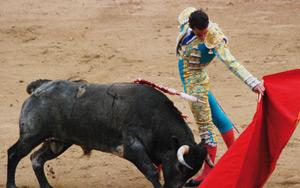 Espagne : le Parlement catalan approuve l'interdiction des corridas