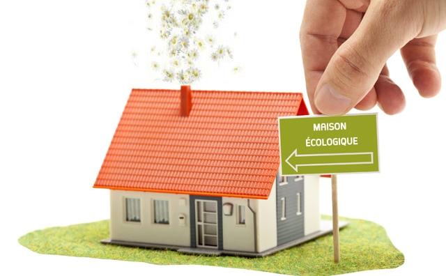 Efficacité énergétique et énergies renouvelables : Pour un habitat éco et écolo