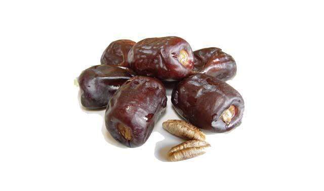 Protection des produits de terroir : Ces célèbres dattes Majhoul