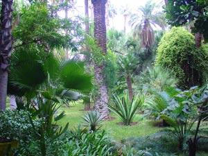 Marrakech : Au coeur des jardins de l'Agdal