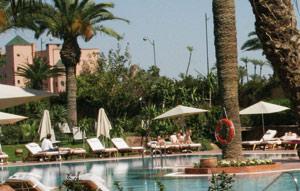 Bilan du comité de veille stratégique : une légère amélioration dans le tourisme