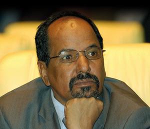 Réforme constitutionnelle : Comment le «Oui» va clore l'affaire du Sahara