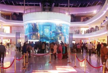 L'été sera africain au temple du shopping: Et de 3 pour le Morocco Mall Shopping Festival
