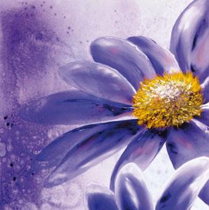 La sensualité des fleurs peinte par Nadia Ouriachi