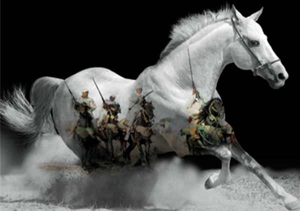 L OCP sponsor officiel du Salon du cheval