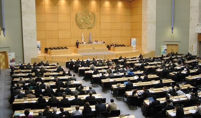 Le Maroc élu au Conseil des droits de l'Homme de l'ONU