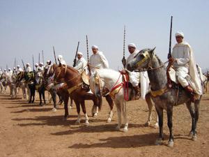 Oujda : Organisation du 26ème concours régional de Tbourida et d'élevage