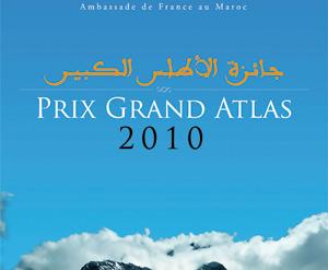 Dix titres en compétition pour le Prix du roman francophone