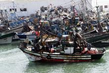 Pêche : BMCE Capital va au fond des choses