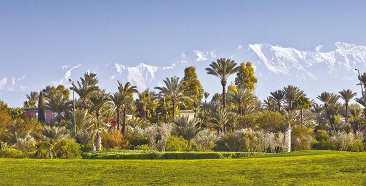 Trophée Palm World Vacation : Pourquoi les entreprises doivent  se mettre au golf